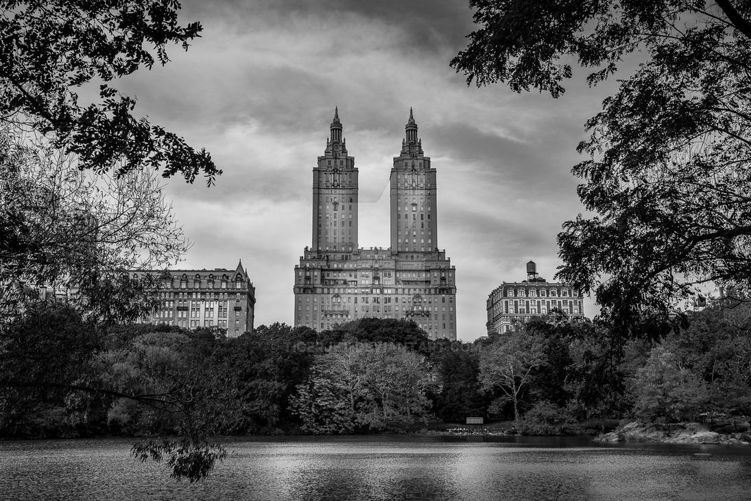 Central Park BW by tigerjet