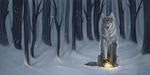 Winter by NatkieHv