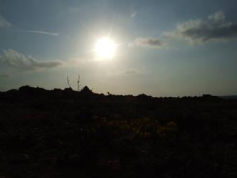 sunny sunn sun by 0-carnivaeen-0