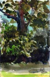 Landscape watercolour sketch