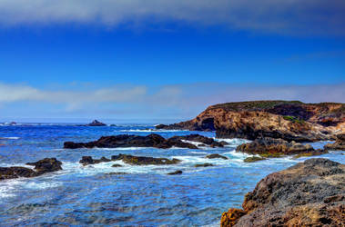 Point Lobos shoreline