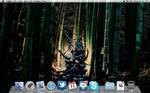 My OSX Desktop DUM SPIRO SPERO