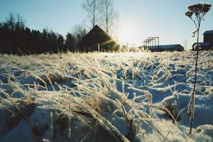 Frost by ljenda