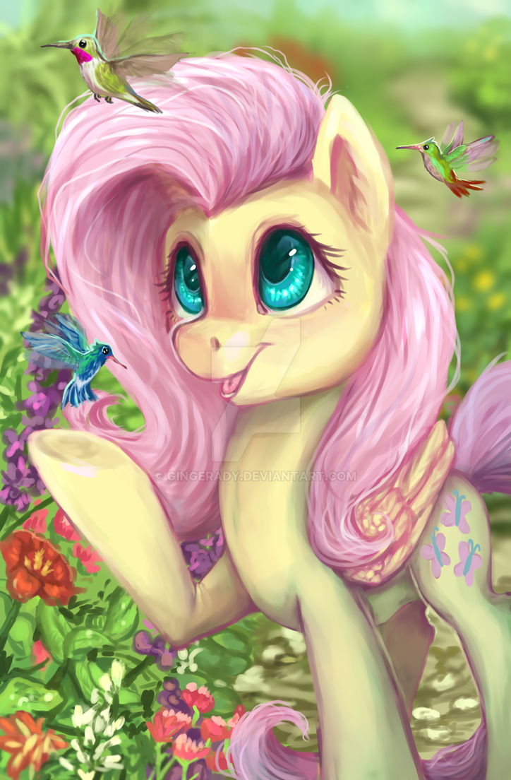 fluttershy_by_gingerady-ddcocv4.png