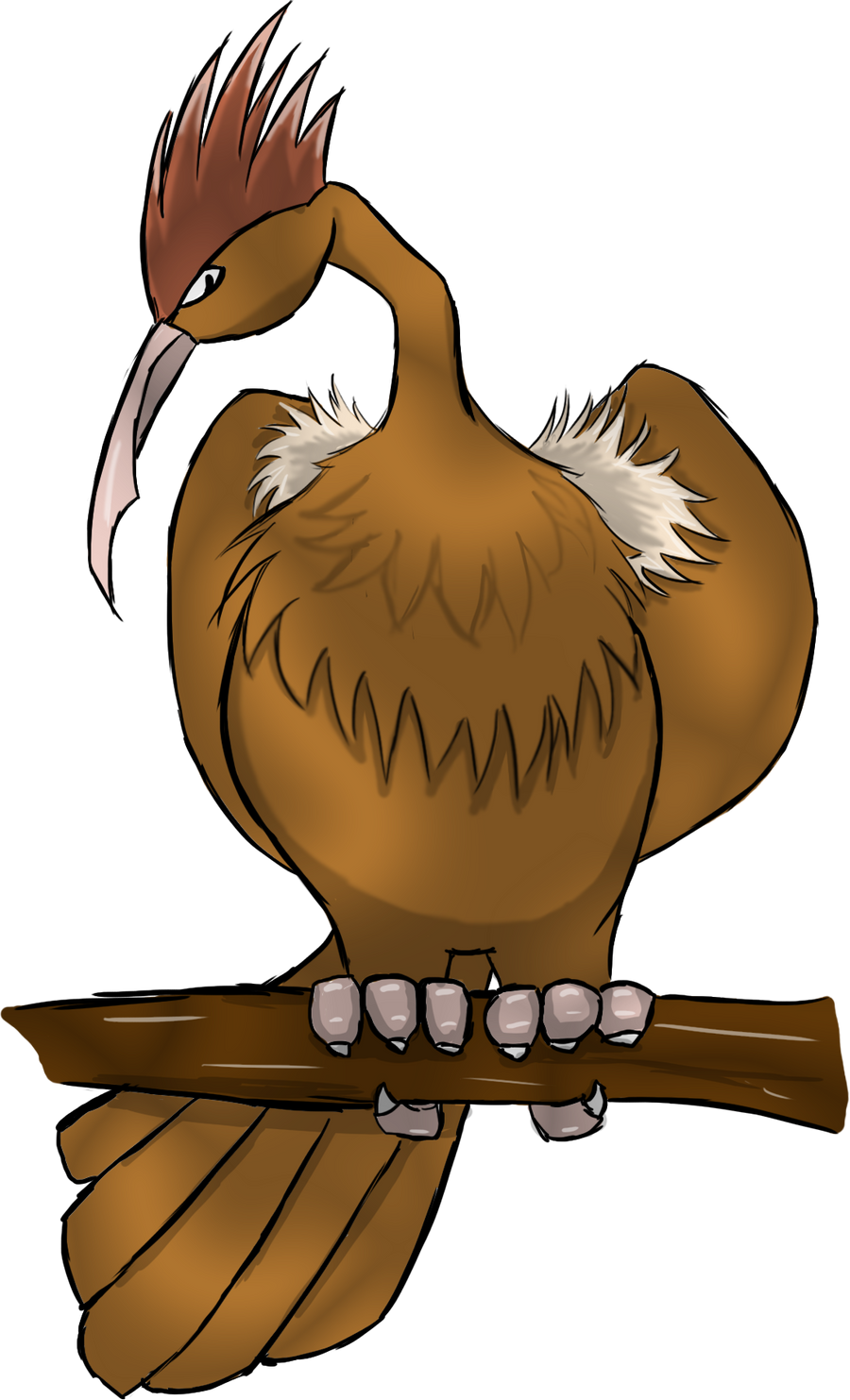 Fearow Pokemon Wallpaper Images | Pokemon Images