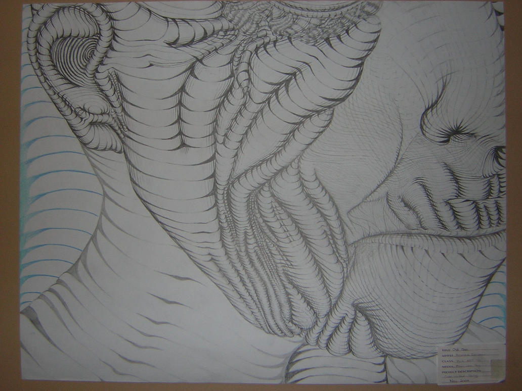 Contour Line Drawings By Famous Artists : Contour line drawing by gardentombstone on deviantart