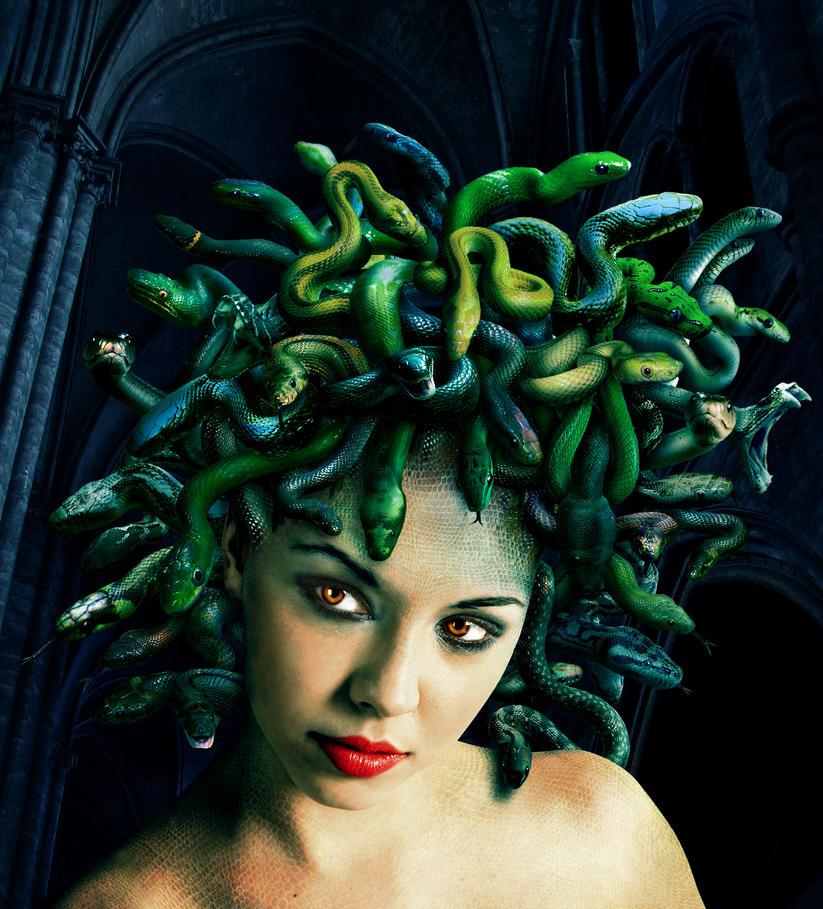 Medusa and Gorgons on Pinterest   Greek Mythology, Snakes ...