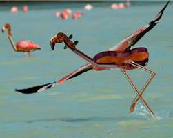 Flying Violingo by Onanymous