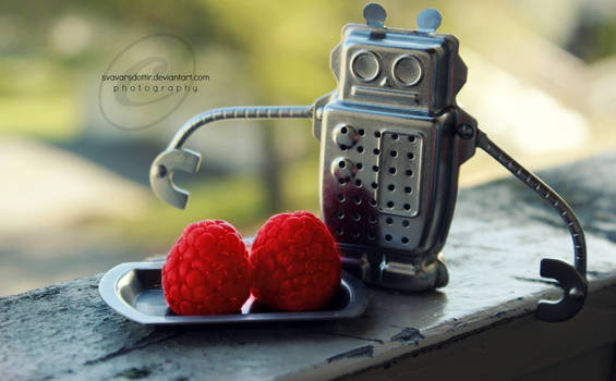 The robot who ate raspberries