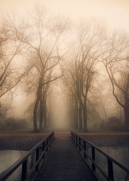Bridge to Mystery by jva3