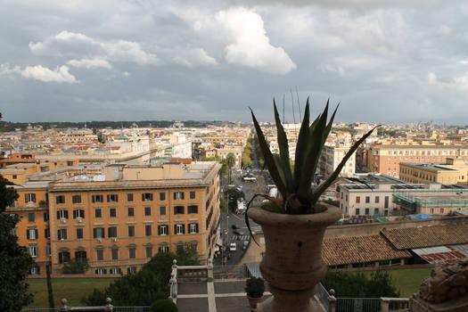 So sees Rome Papa