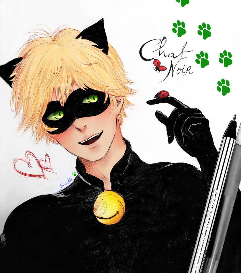 Chat Noir~