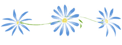 Daisy Divider 1 by 16thSquadSanseki
