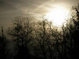 Eternal heaven by persephone-tears