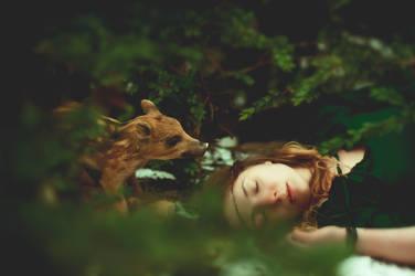 S'assoupir sous les bois by Lorelyne