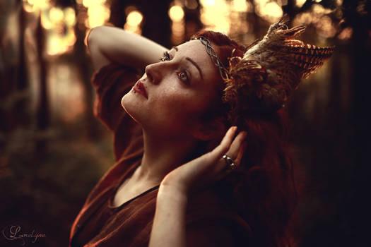 Her silent cries at dawn