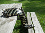 Yellow and Black Scaled Dragon Tail with Spikes