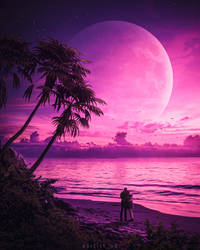 The Beautiful Moon