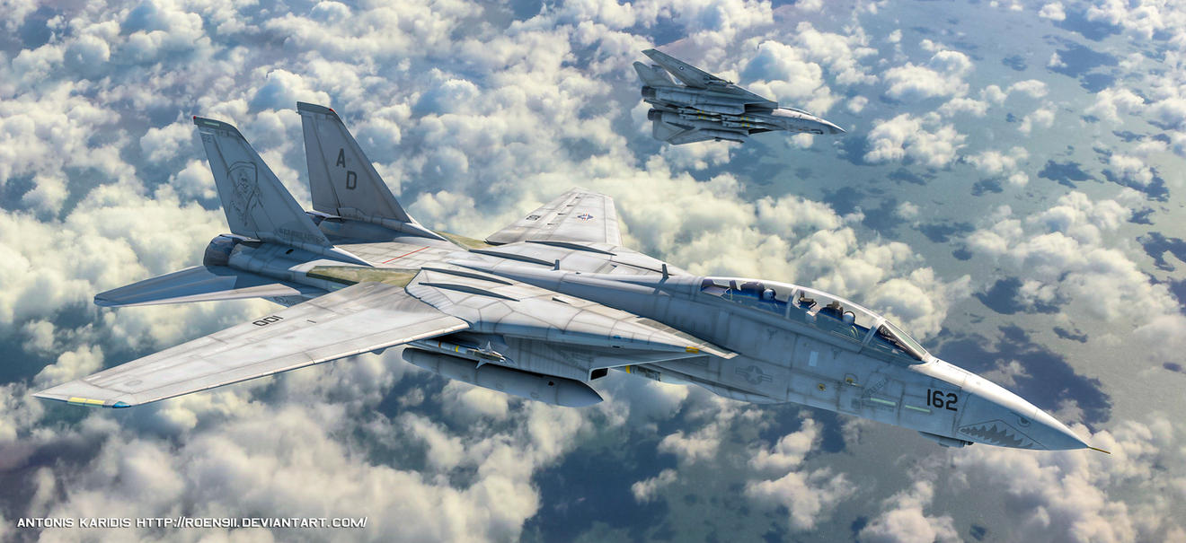 Tomcats by rOEN911