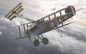 Sopwith Dolphin - Copper State Models by rOEN911