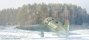 Polikarpov I-16 Rata by rOEN911
