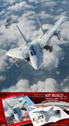 Kagero - F-14 Tomcat Grumman