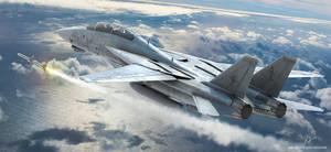 F-14 Tomcat - Fox-1