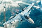 Roar of the Flanker - SU-33