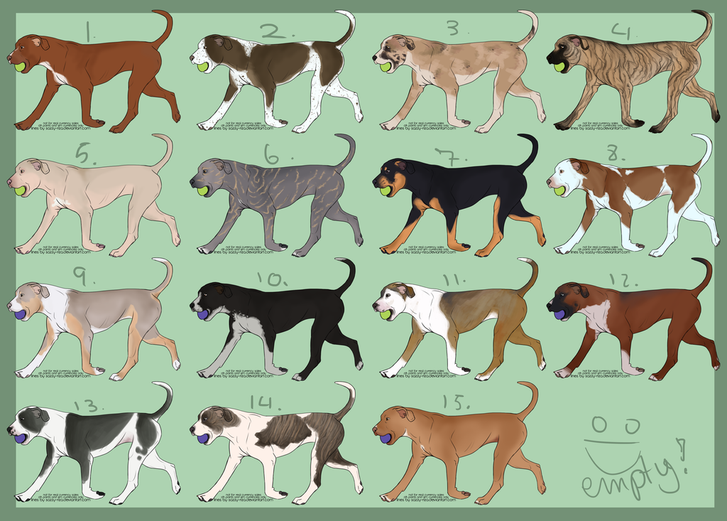 American Bully Colors Chart - Happy Living