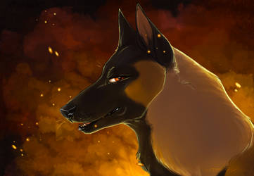 .: Watching You All Burn :. - speedpainting by mimmiley