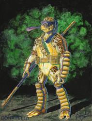 Donatello by patrickjay