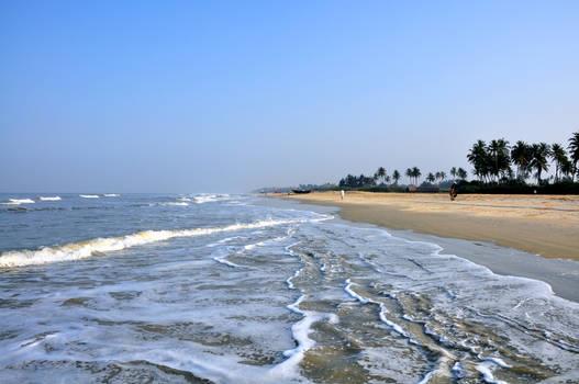 Goa Nature