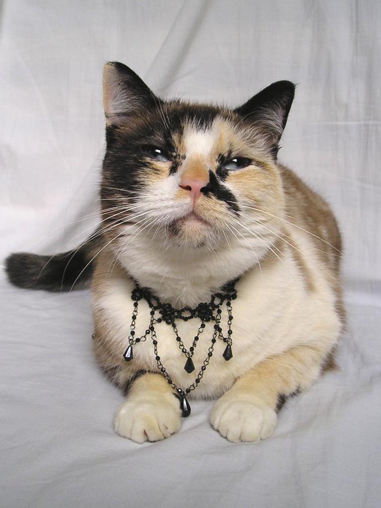 Necklace 8 by spleen-queen-stock