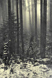 winter ghost. by Radical-Jonny
