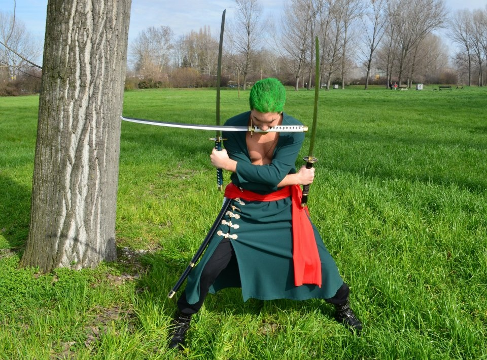 Showing collection  48  for One Piece 2 Years Later ZoroZoro New World Cosplay