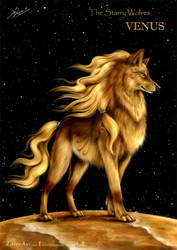 The Starry Wolves - Venus by ZilvenArt