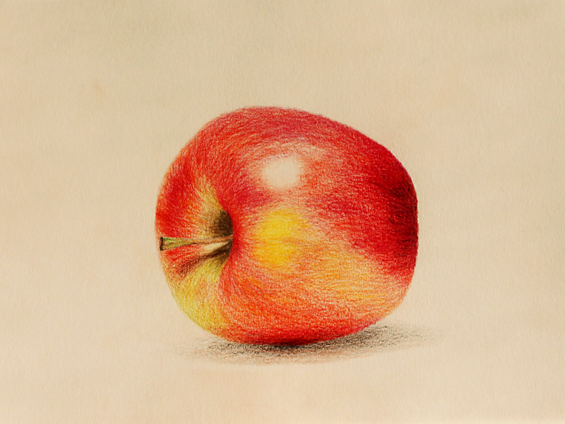Apple by ynist