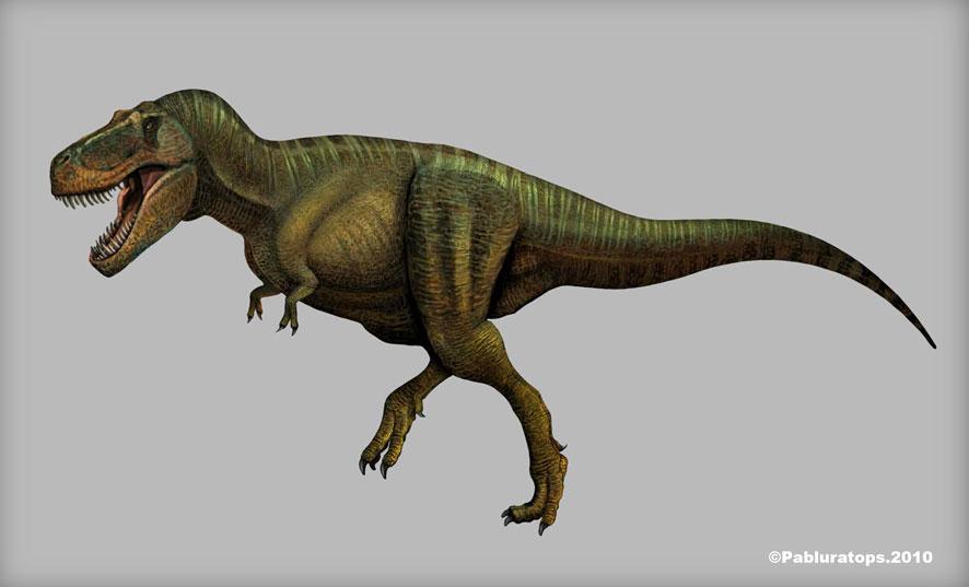 Tyrannosaurus rex by pabluratops