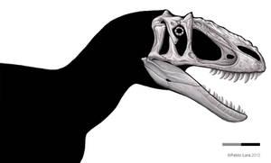 Yutyrannus shaded skull