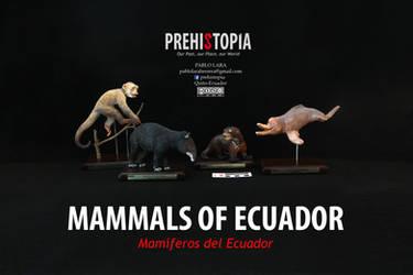 MAMMALS OF ECUADOR - MAMIFEROS DEL ECUADOR