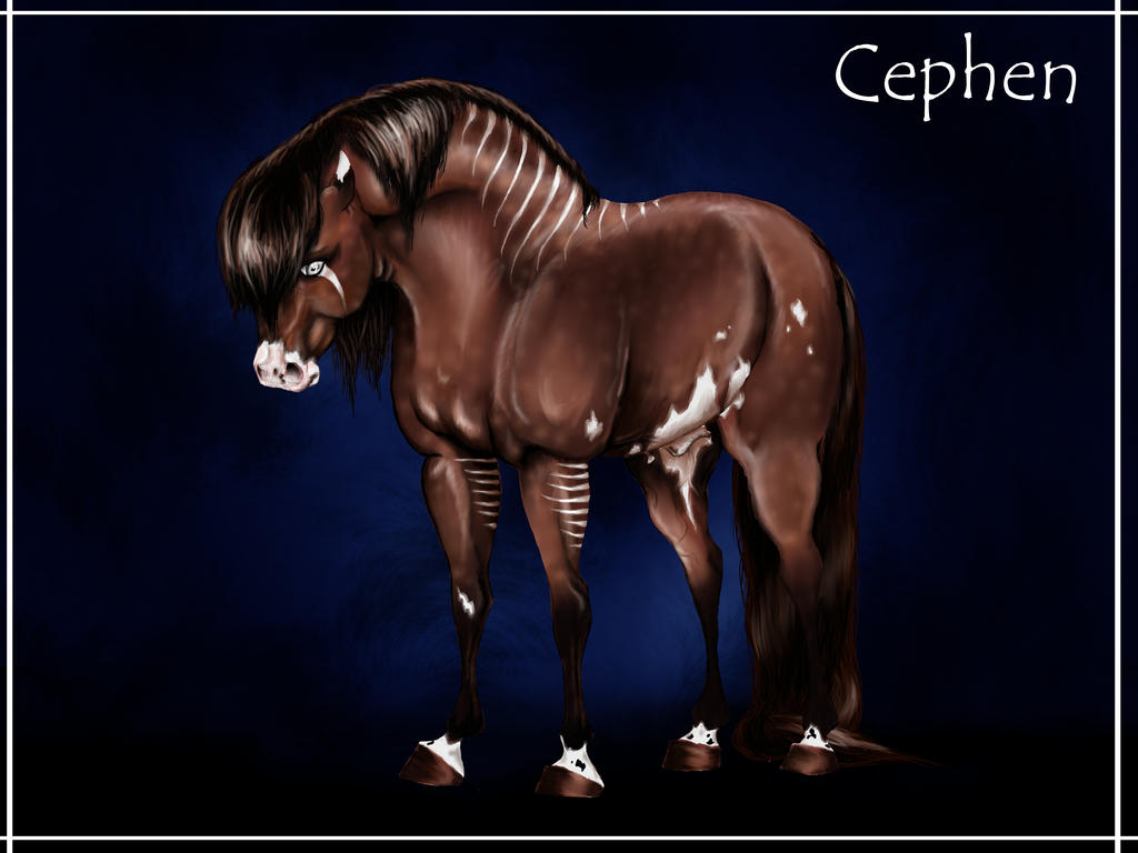 Reference: Cephen by equusferus