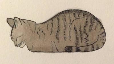 Issa cat by tesstriestoart