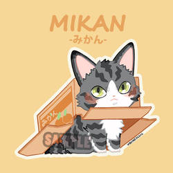 Mikan | Cats in Boxes by VonKellcsiis