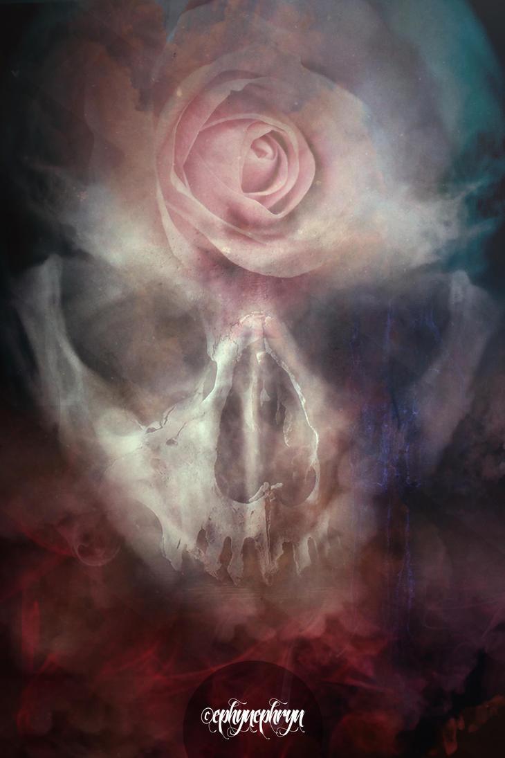 Skullture VII. by Ephynephryn