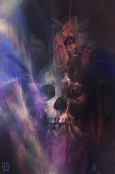 Skullture 14.