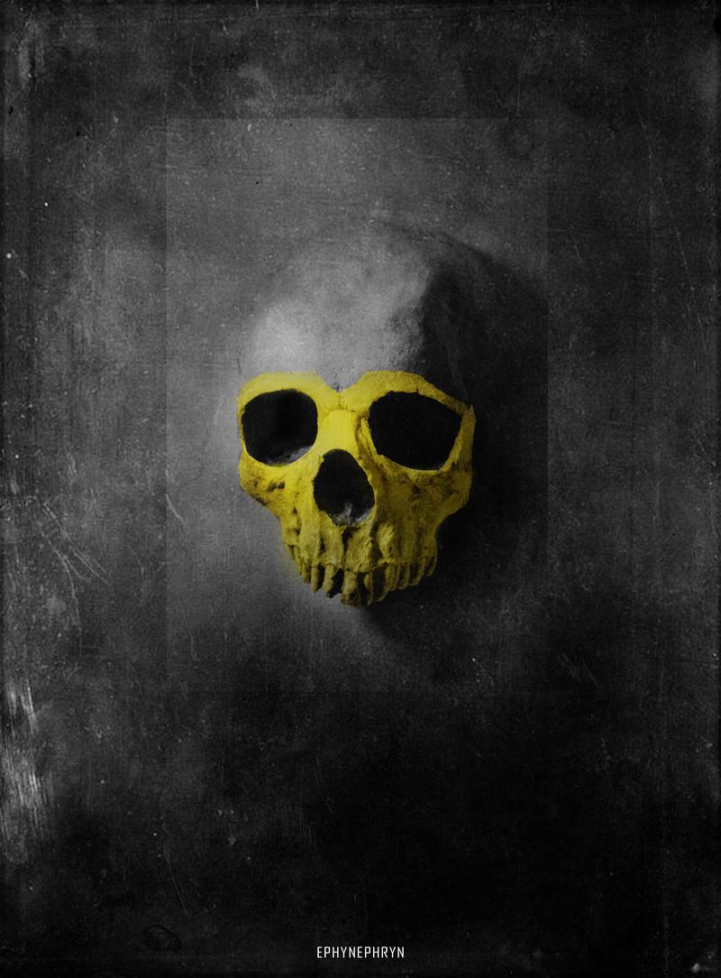 Skullture XV.
