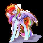 Rainbow poni