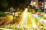 Lights on the road by coolingtea