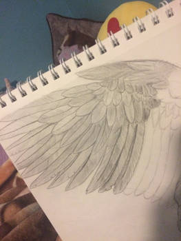 Feathers- eagle wip