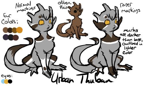Urban Thuban- reference by BouncingLu
